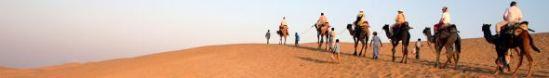 Blog-Wüste